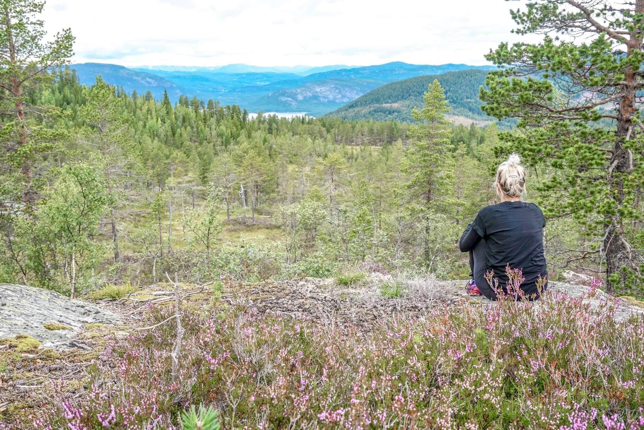 ou faire une randonnée dans le télémark norvège