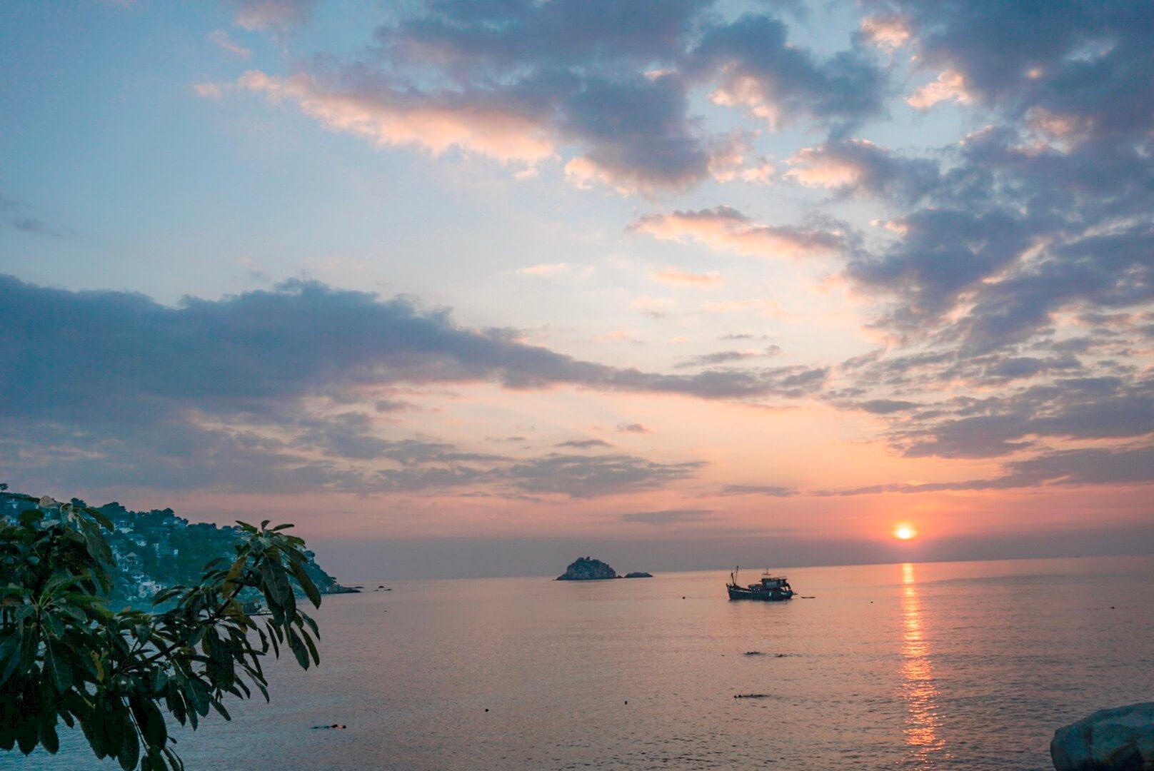 shark bay thailande koh tao blog