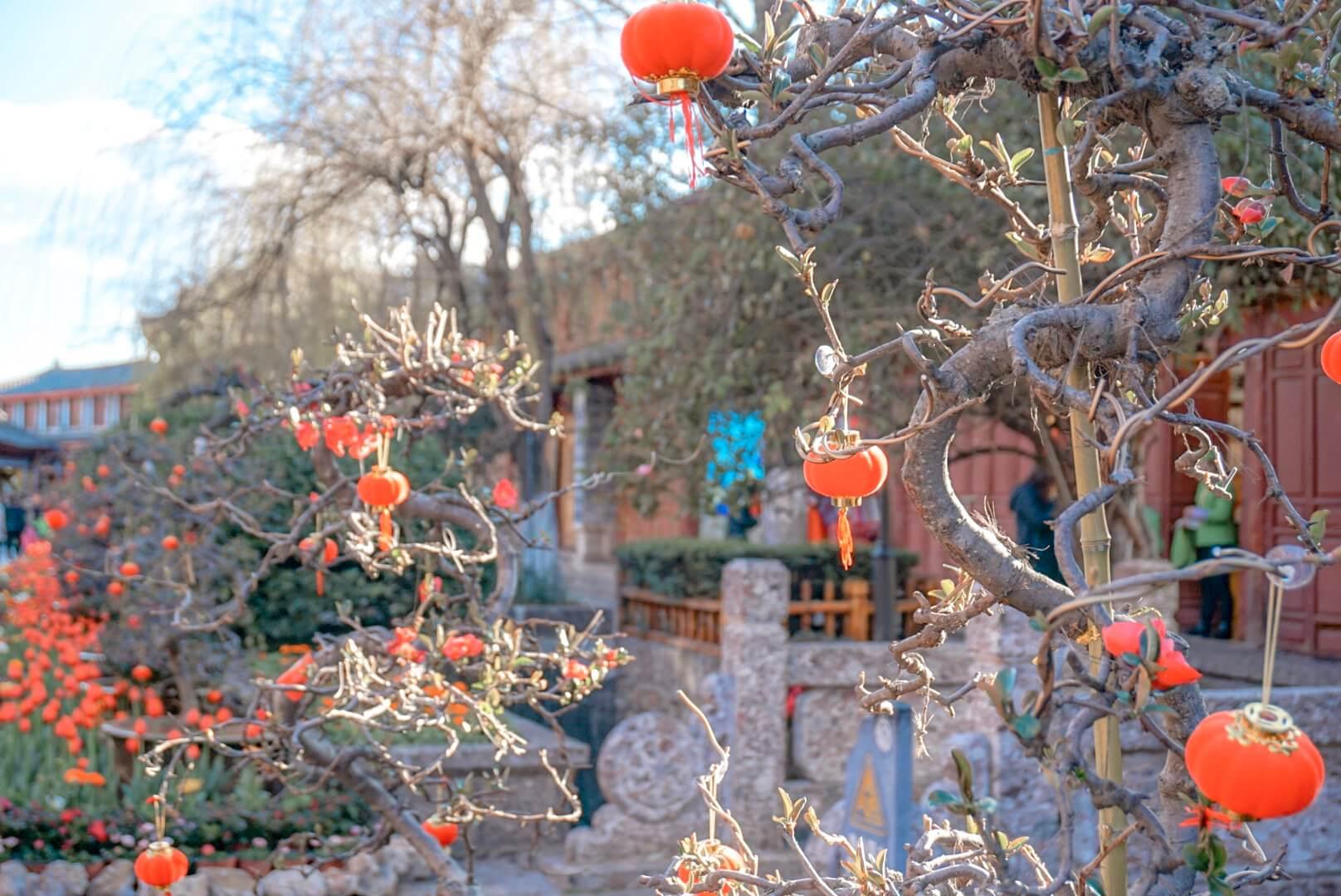 Que faire dans le Yunnan Lijiang blog voyage