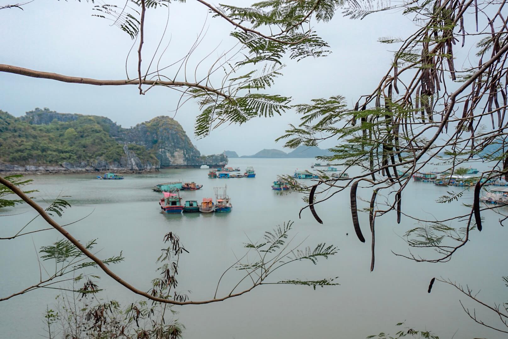 croisière à la journée long baie vietnam