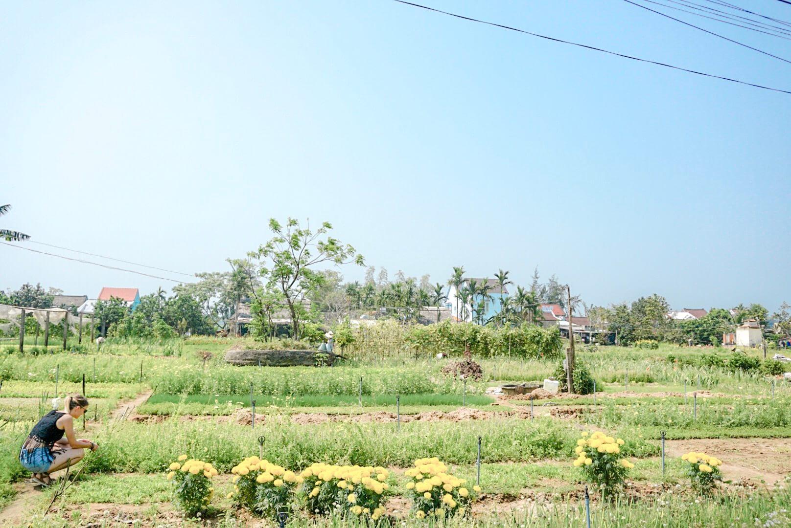 Tra Que Village écologique Vietnam
