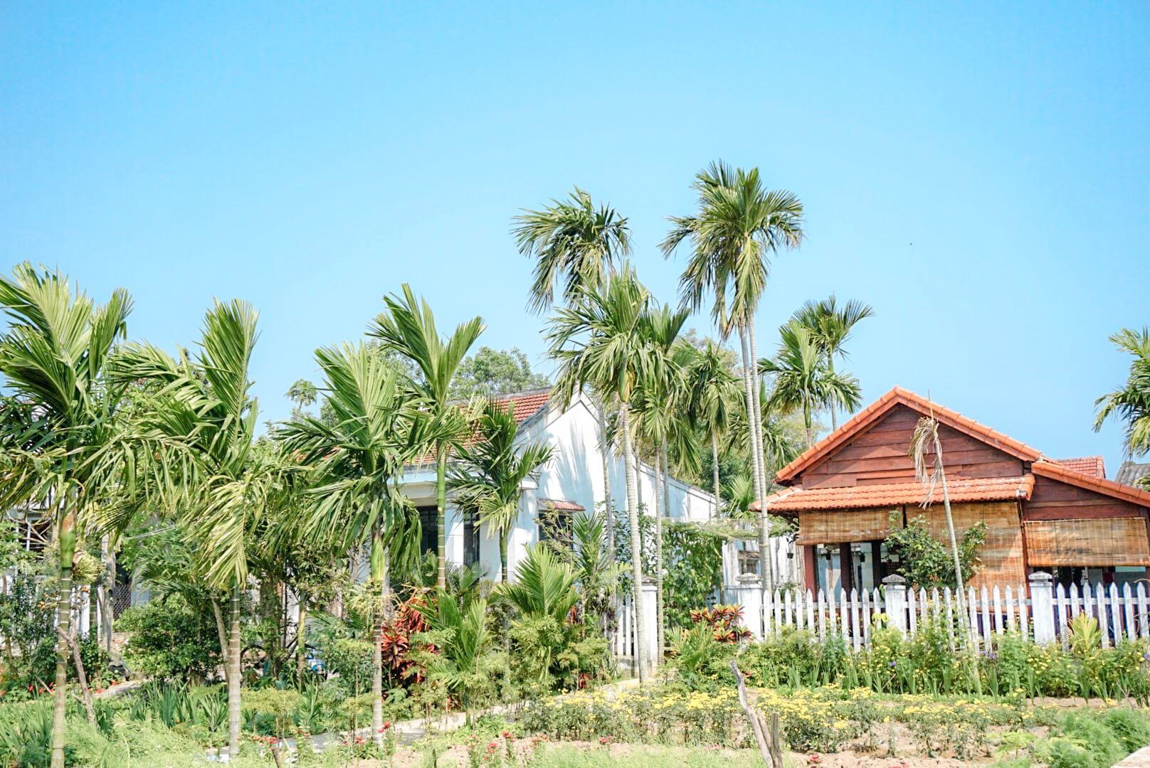 Tra Que Village écologique Hoi An Vietnam