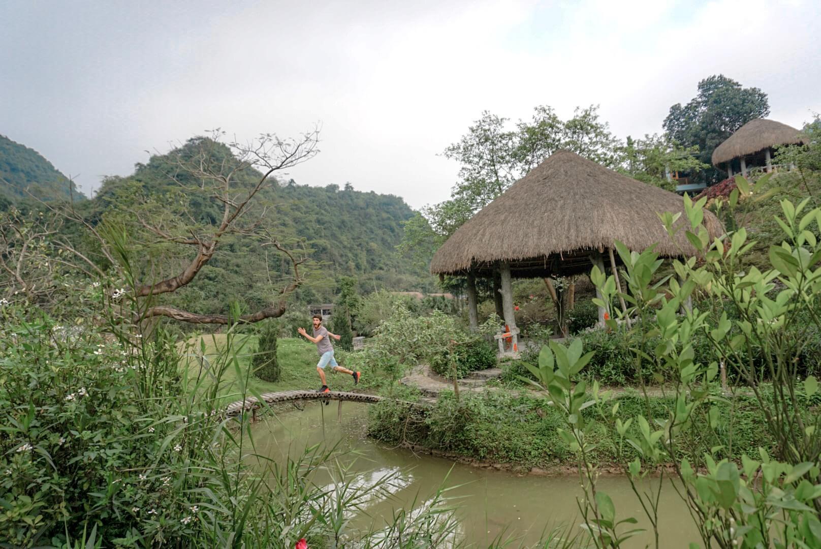 Jardin des oiseaux tam coc Vietnam