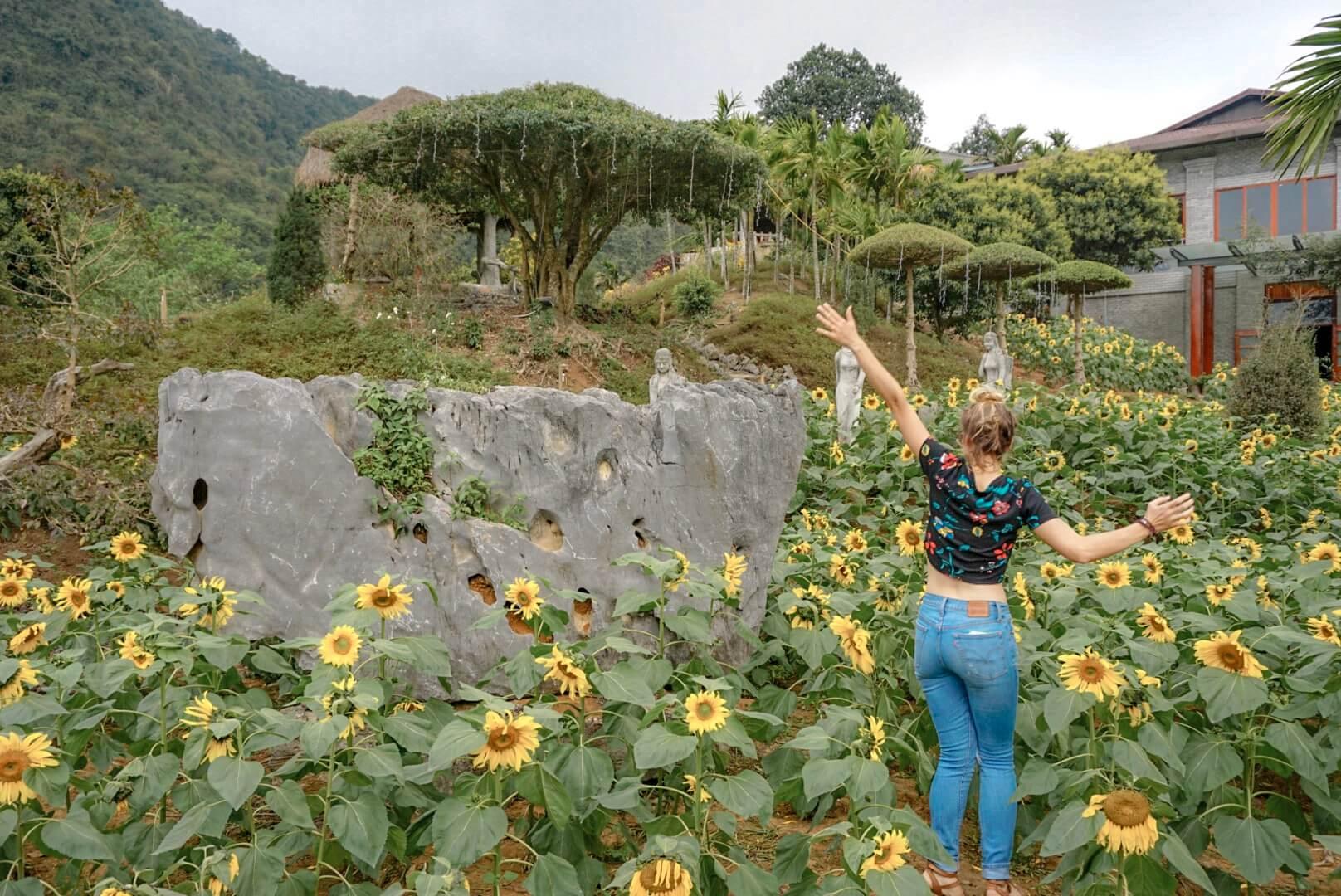 Visiter Tam coc Parc oiseaux