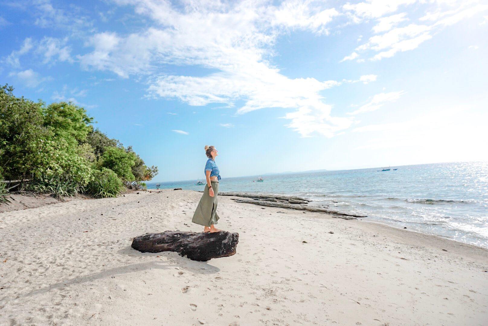 Magnifique Plage de Balicasag Bohol Philippines