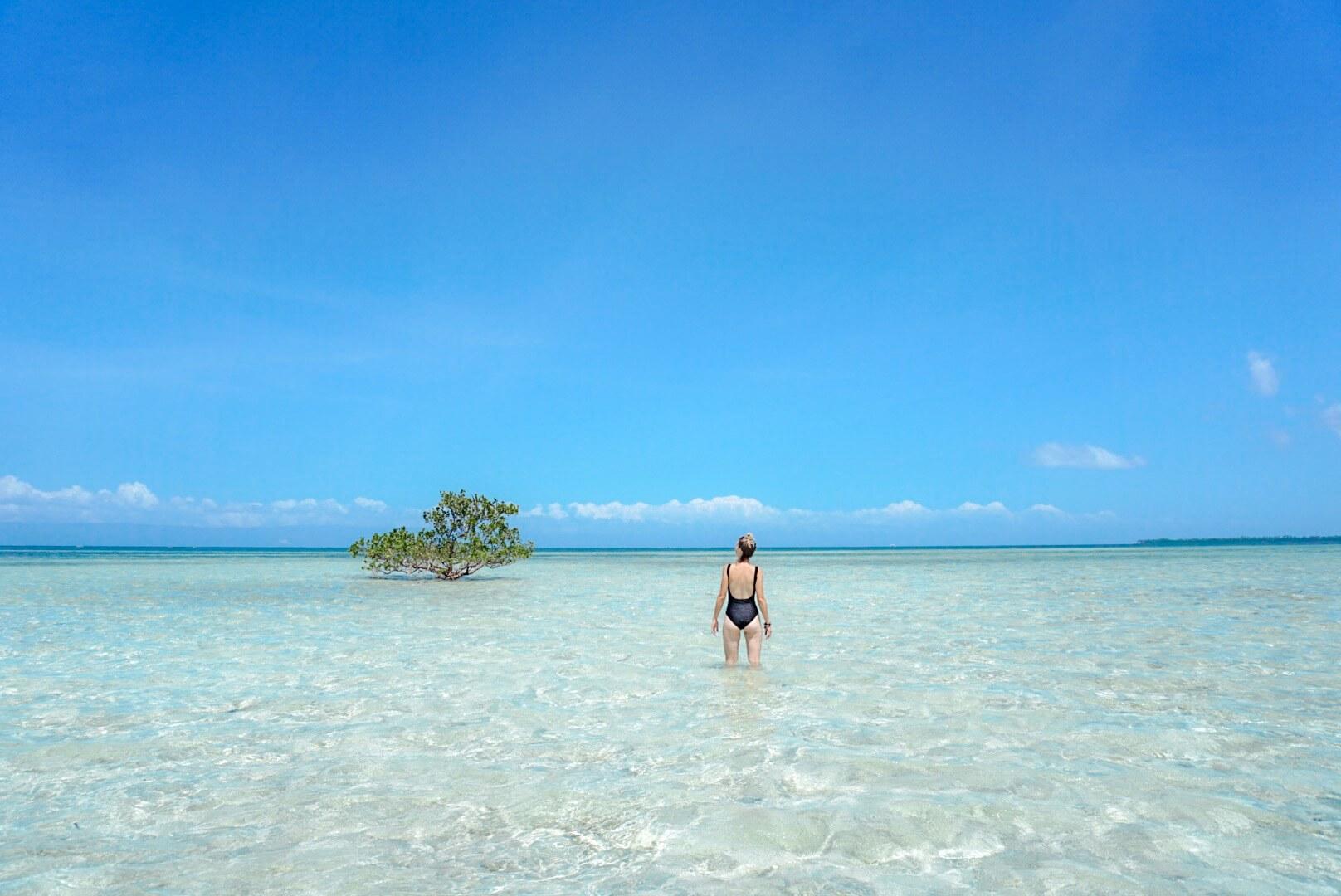Journée Island hopping virgin island Panglao philippines