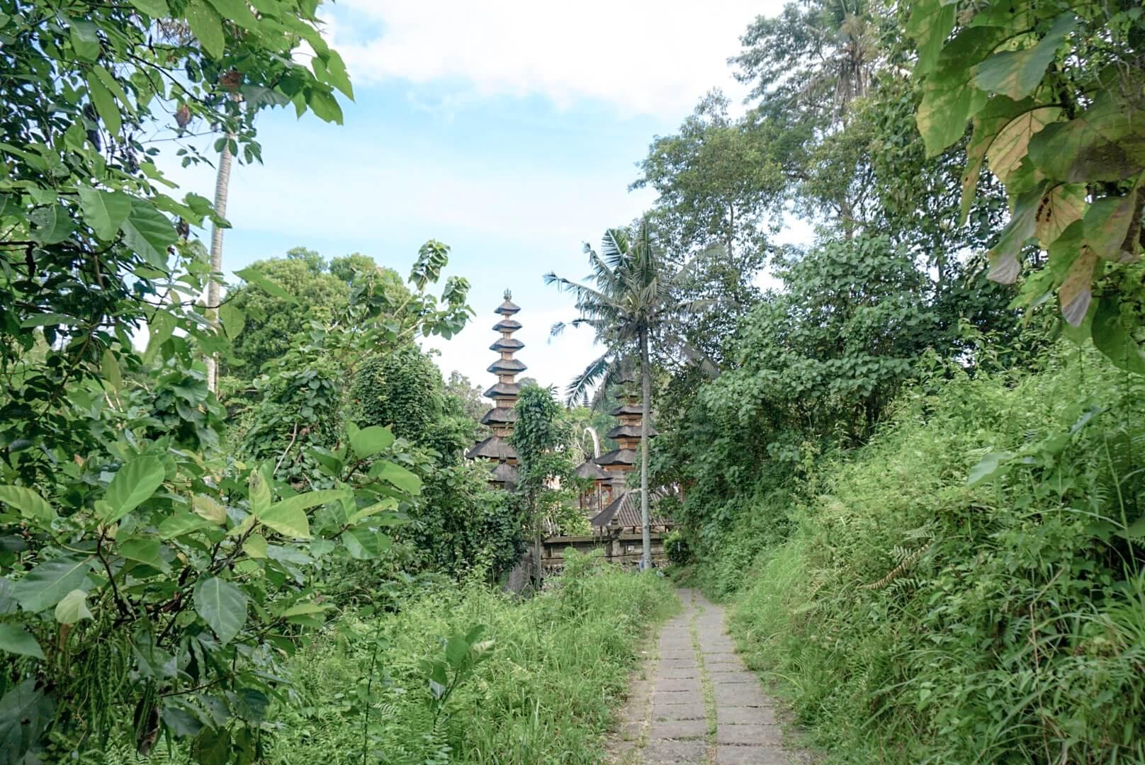 Visiter Ubud Bali marche