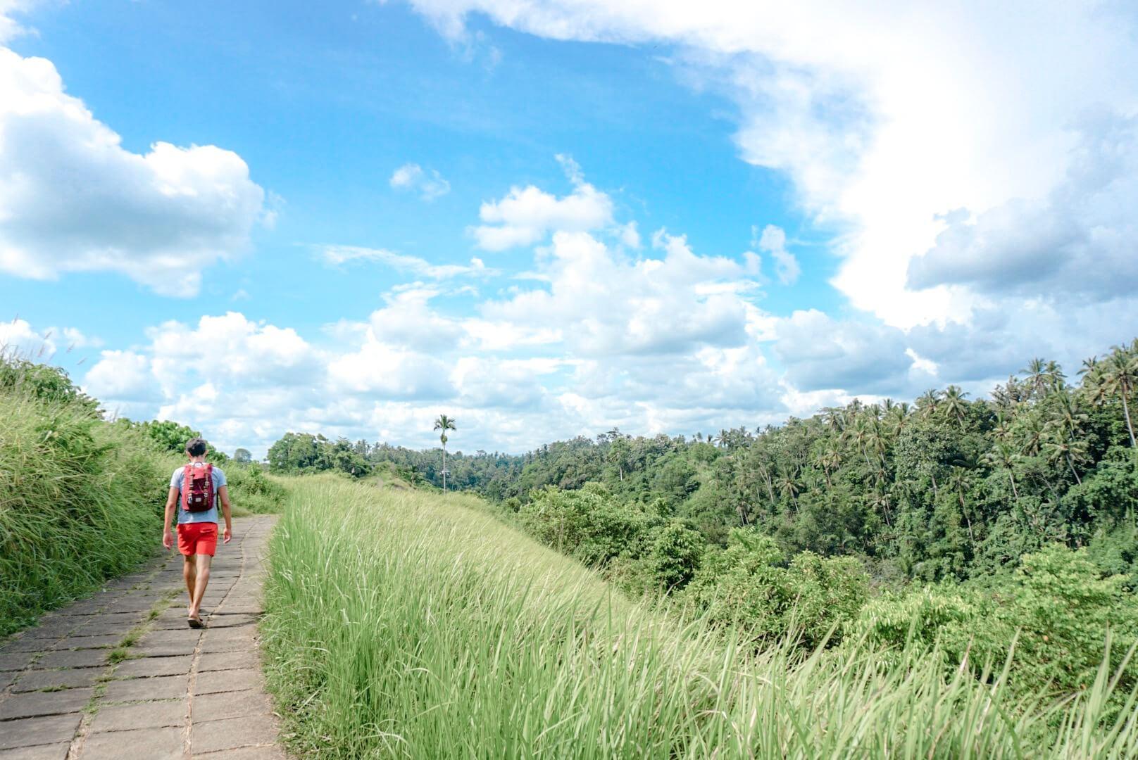 sentier petite randonnée près d'Ubud Bali rizière Indonésie