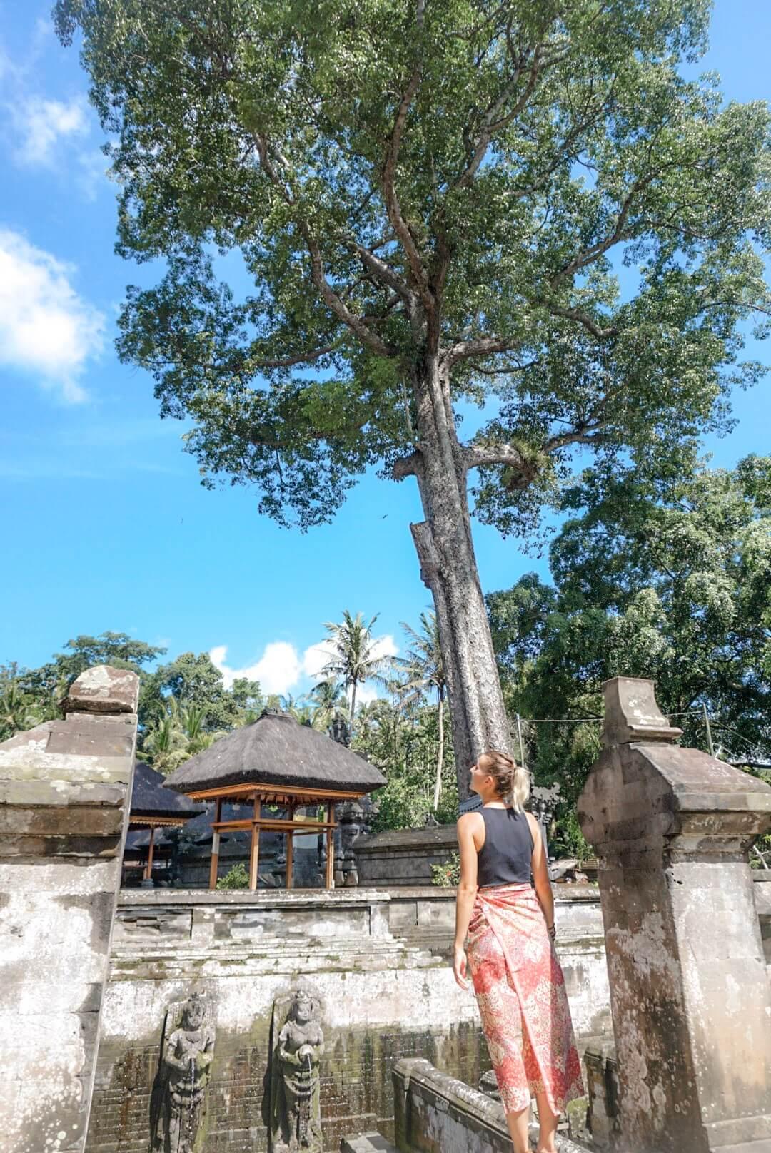 Visiter temple de Goa Gajah Ubud Bali