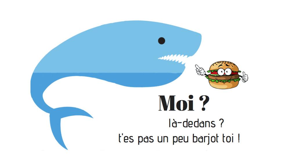 Problème requin baleine Oslob alimentation