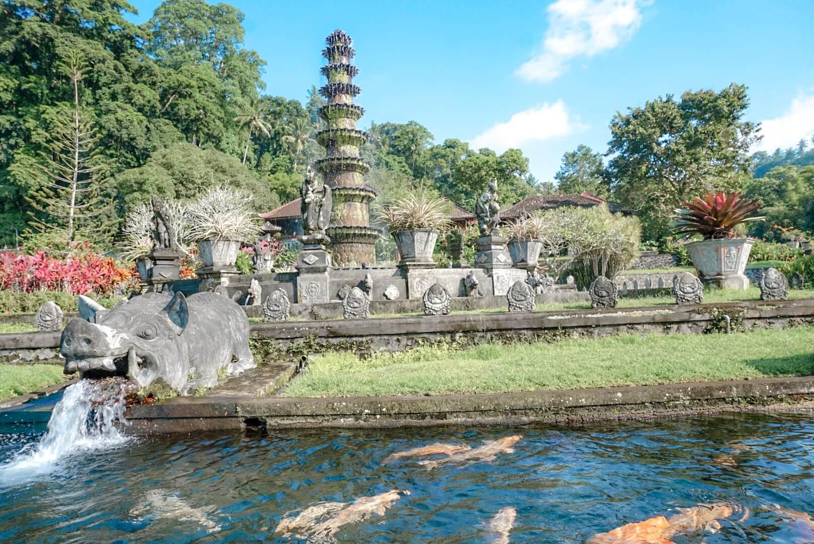 Les fontaine et poisson du temple Tirta Ganga Amed