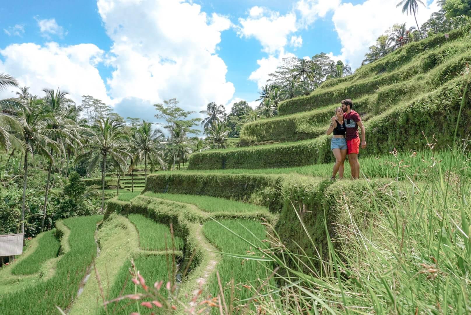 Les rizières de Tegalalang depuis Ubud Bali Indonésie