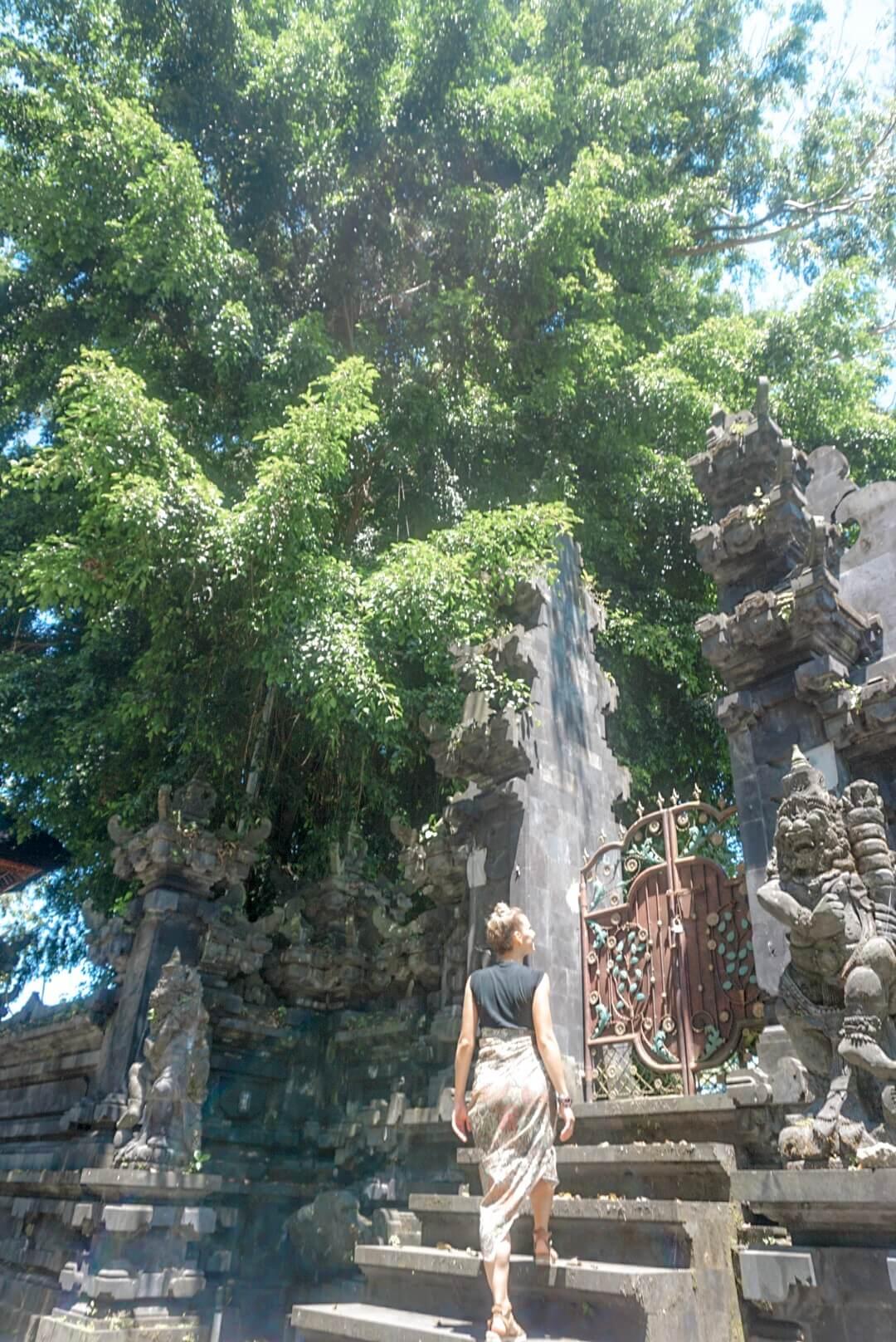 Visiter les temples et villages aux alentours d'Ubud Bali