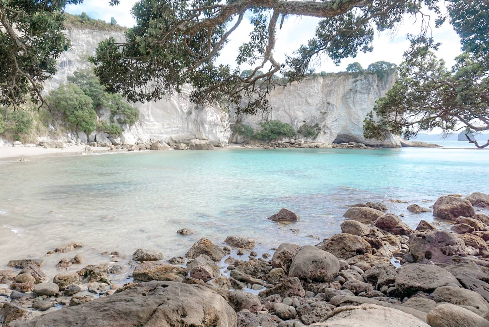 Visiter la baie de coromandel proche de Cathedral Cove
