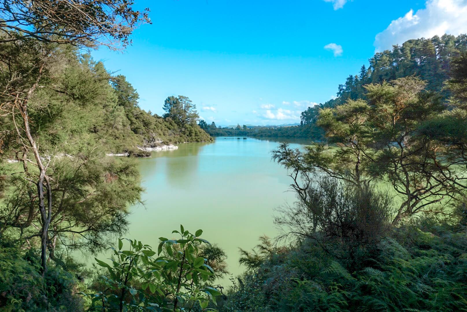 le lac vert du parc wai-o-tapu