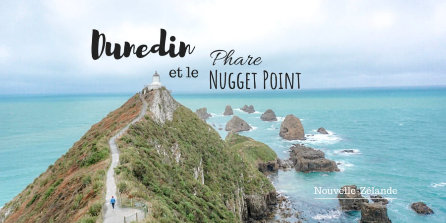 dunedin et le phare de nugget point blog voyage