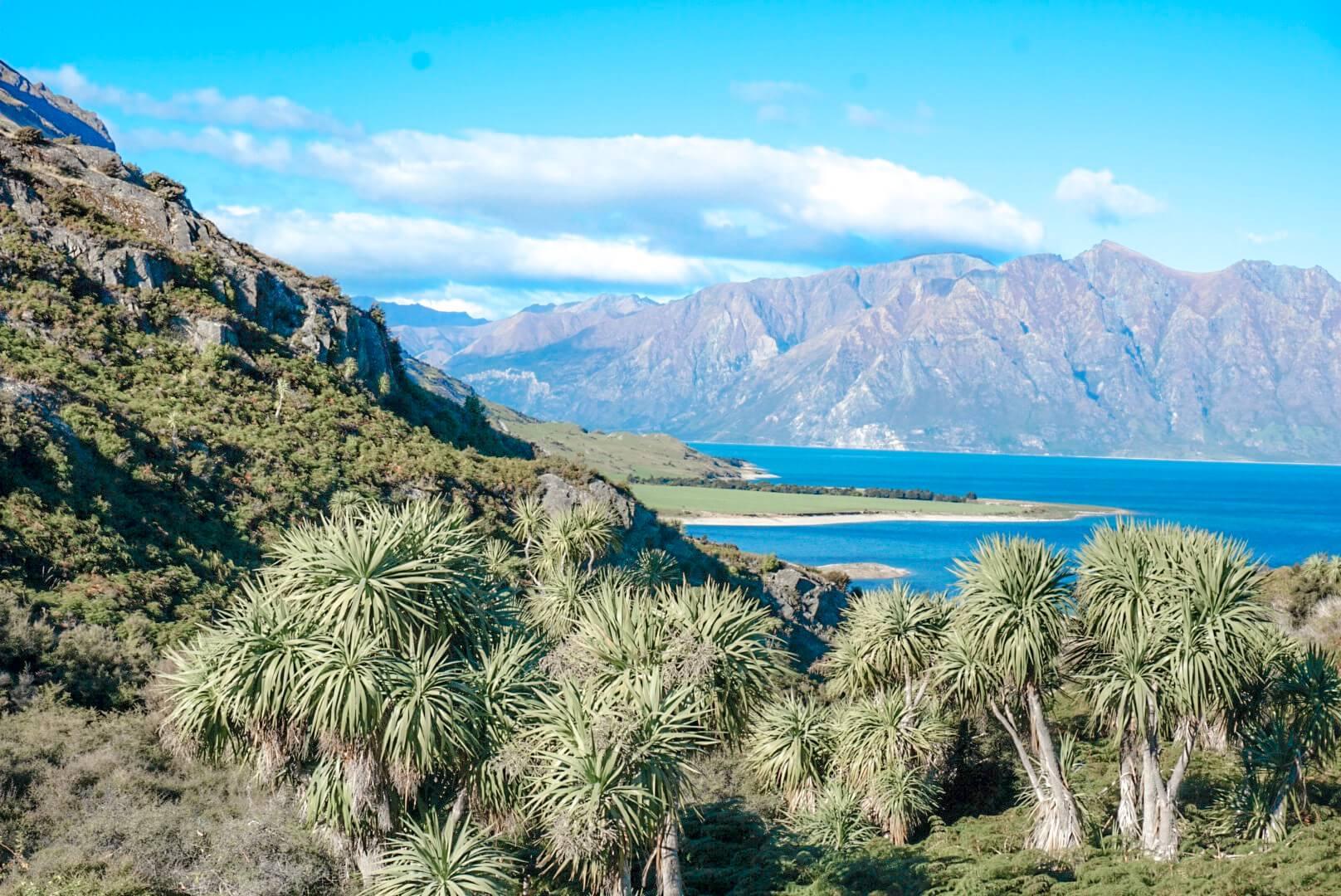 montagne et lac wanaka plus beau paysage nouvelle zelande
