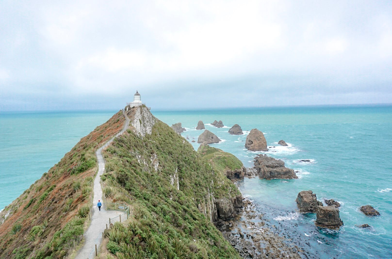 nugget point le phare du sud de la nouvelle zelande