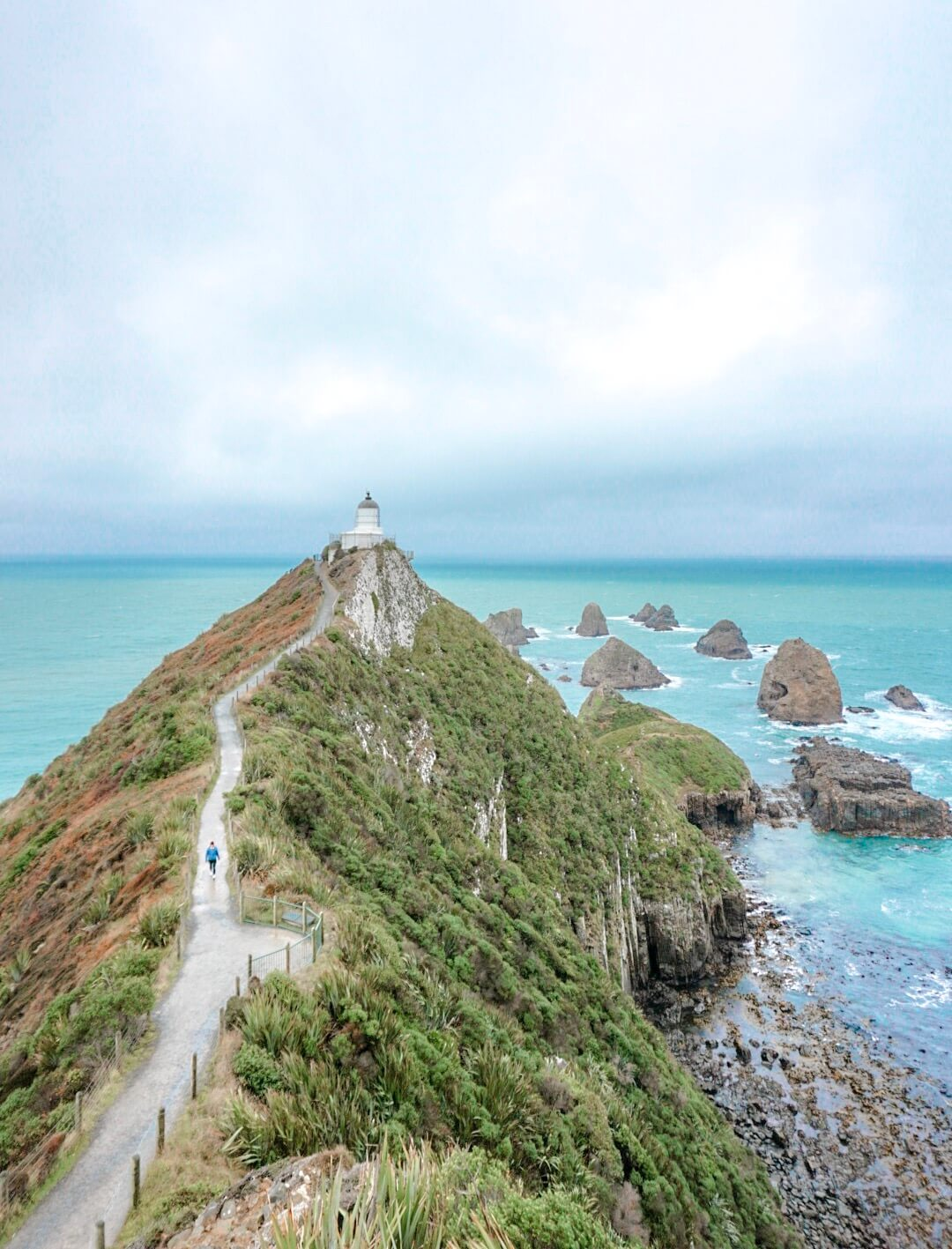 phare ile du sud nouvelle zelande nugget point