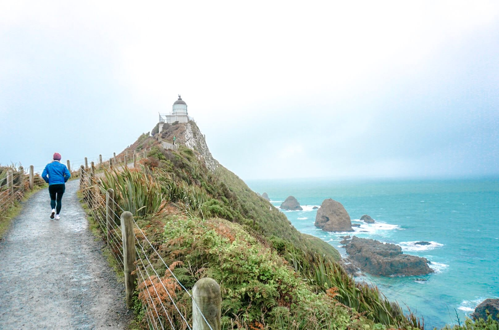 comment se rendre au phare de nugget point