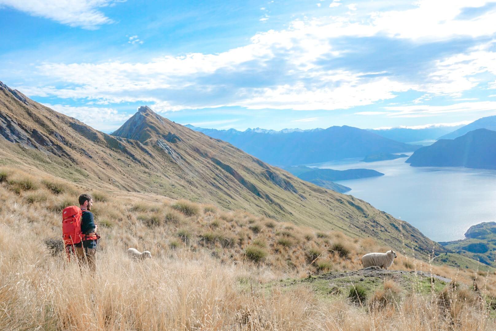 randonnée roys peak topoguide difficulté