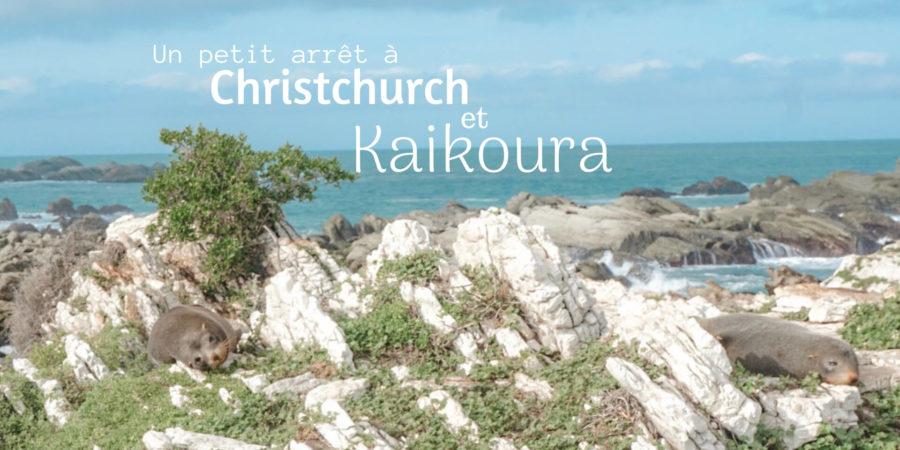 péninsule kaikoura nouvelle zelande que faire
