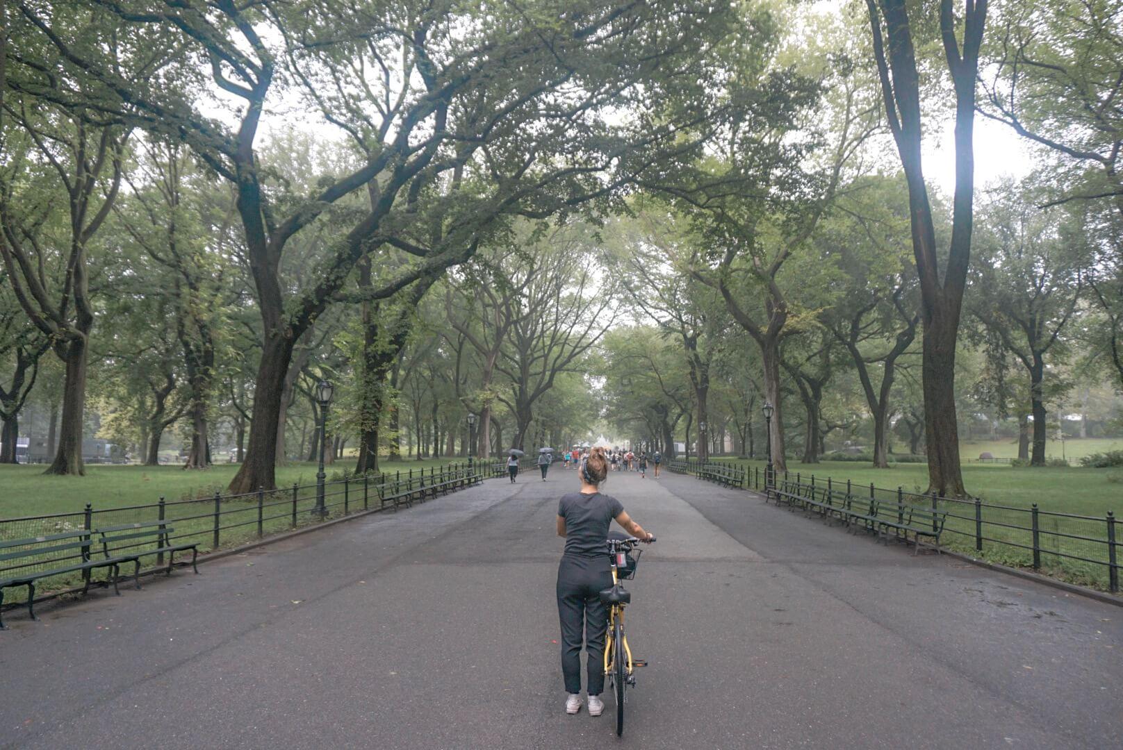 location vélo central parc new york