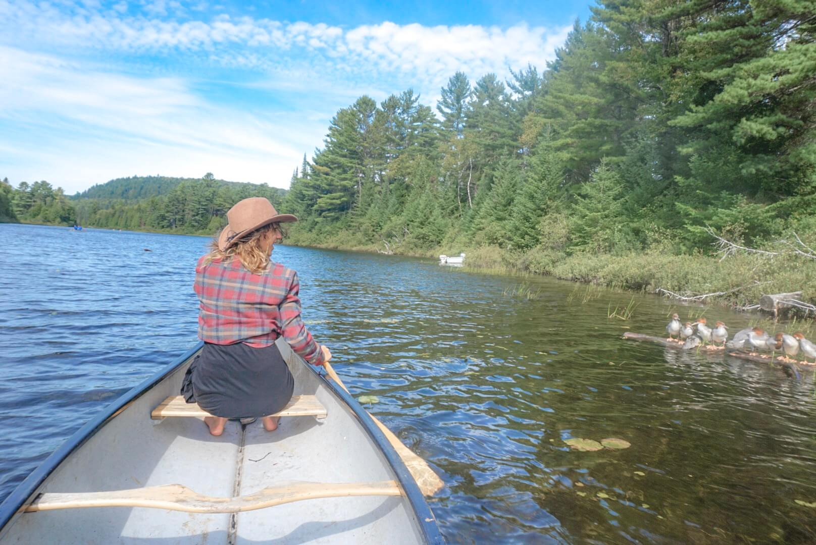 chute weber canoe