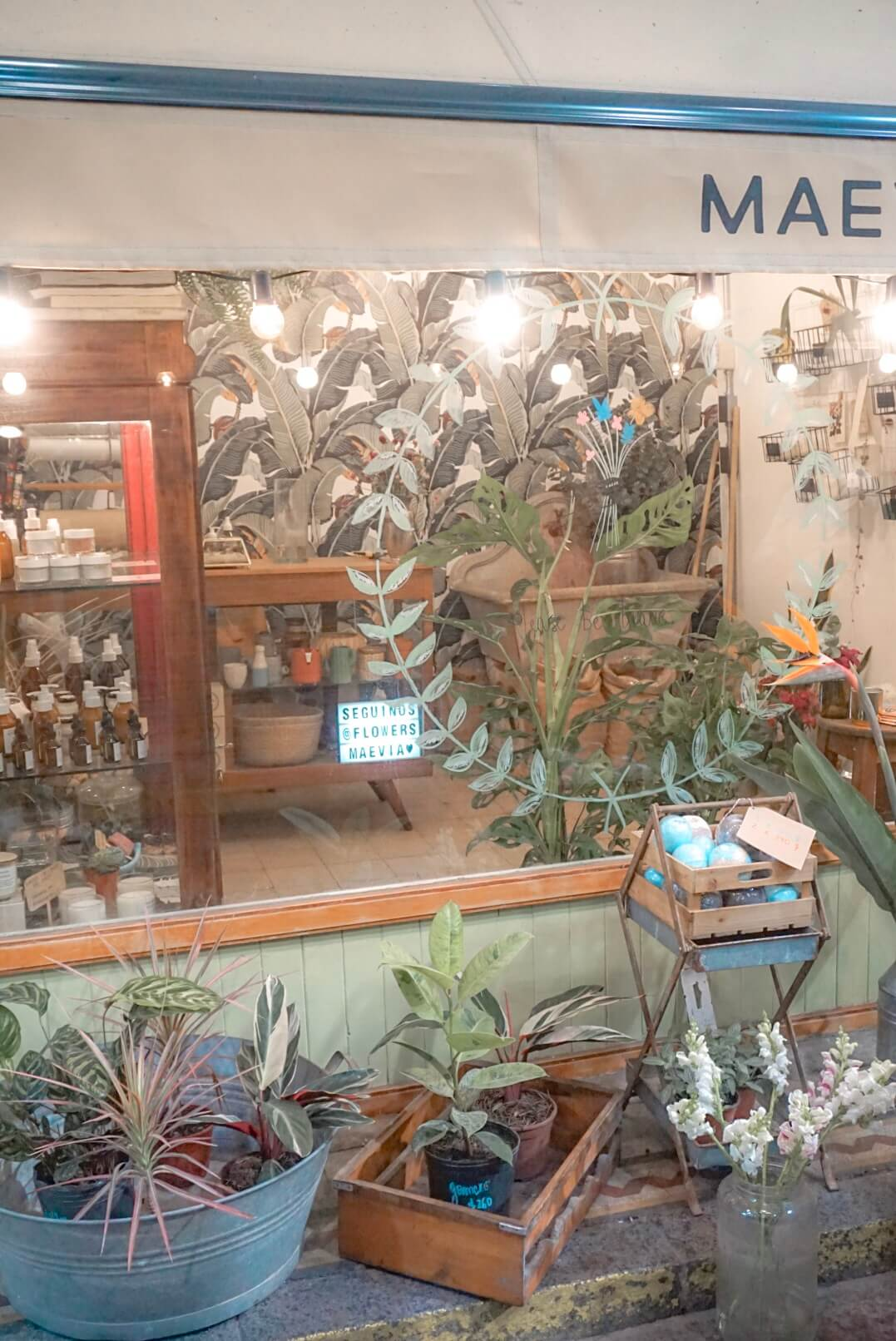 visiter marché san telmo buenos aires argentine
