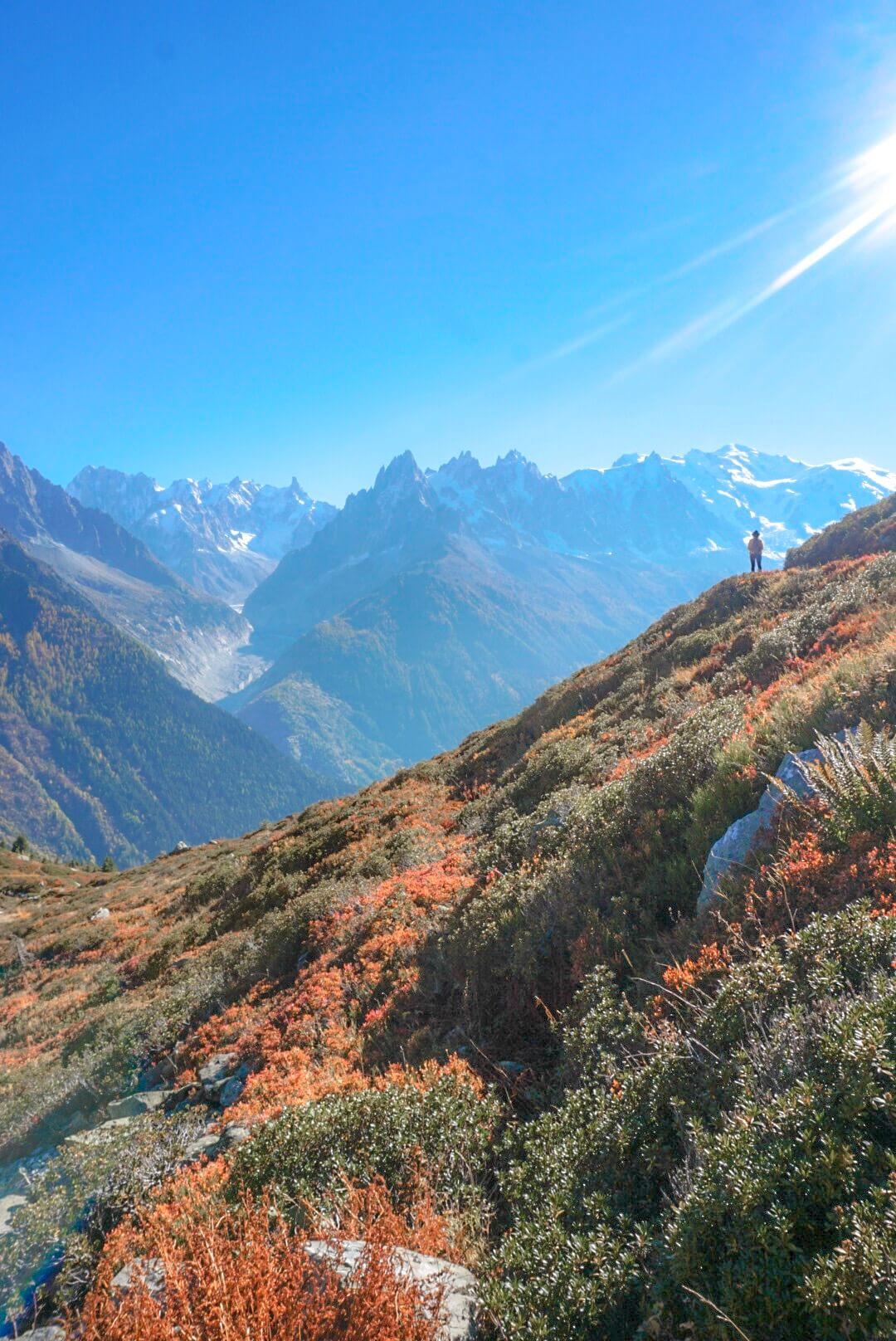 massif du mont blanc depuis flégère