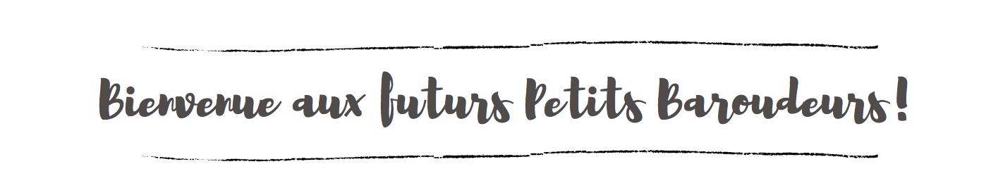 Blogs voyageur