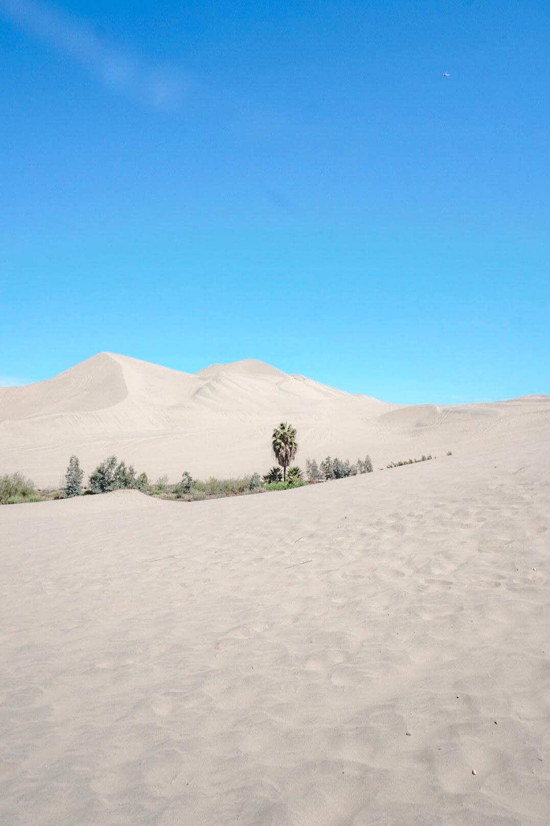huacachina oasis pérou voyage blog